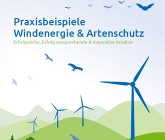 Windergie Konflikte