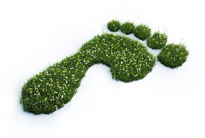 Klimaschutz Fußabdruck