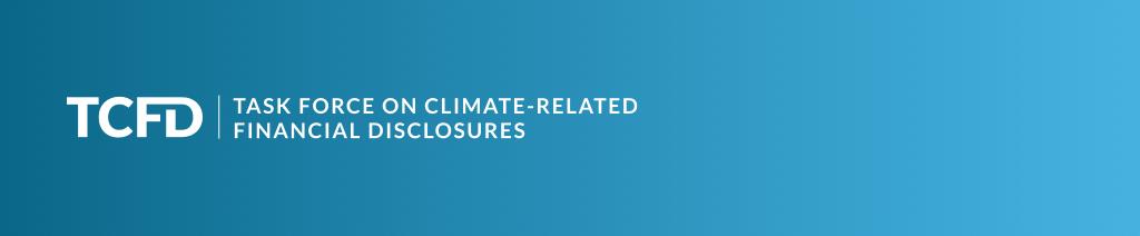 Der Klimawandel und seine Bedeutung für die Unternehmenssteuerung und -berichterstattung, TCFD-1a2